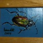 Käfer 2004 Öl auf Malpappe, 2 x 4 cm