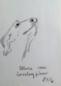 Ulme vom Loreleyfelsen Skizze 1 2016 Bleistift