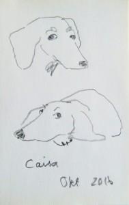 Caisa aus dem Wieratal 2016 Bleistift
