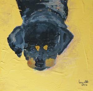 Caisa liegend 2016 Acryl auf Leinwand, 20 x 20 cm