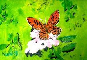 Ölmalerei, Schmetterling, Öl, Malpappe, 12 x 17 cm