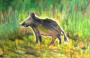 Wildschwein, Farbstifte, Ölstifte, Malkarton, Postkartengröße