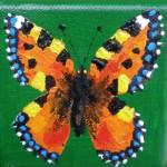 Acrylbild, Kleiner Fuchs, Schmetterling, Acrylmalerei, Leinwand, 8 x 8 cm